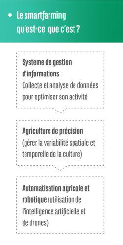 Infogram 1