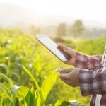 Homme dans un champs tenant une tablette